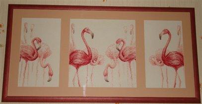 Ртояние на одной ноге фламинго и другие длинноногие птицы используют.