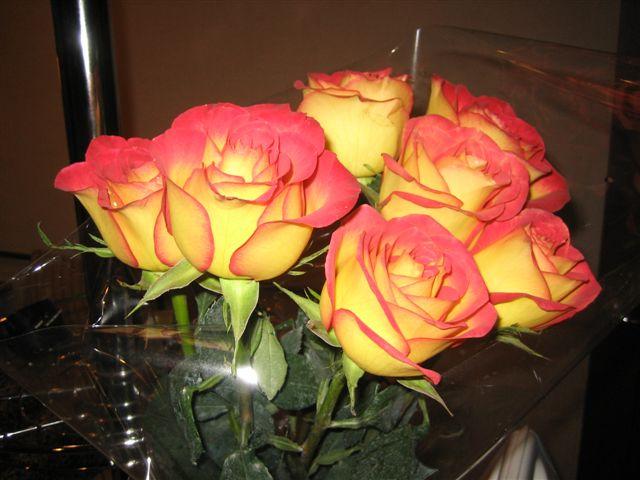 Мне подарили розу картинки