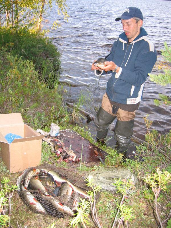 карельская рыбалка сетями