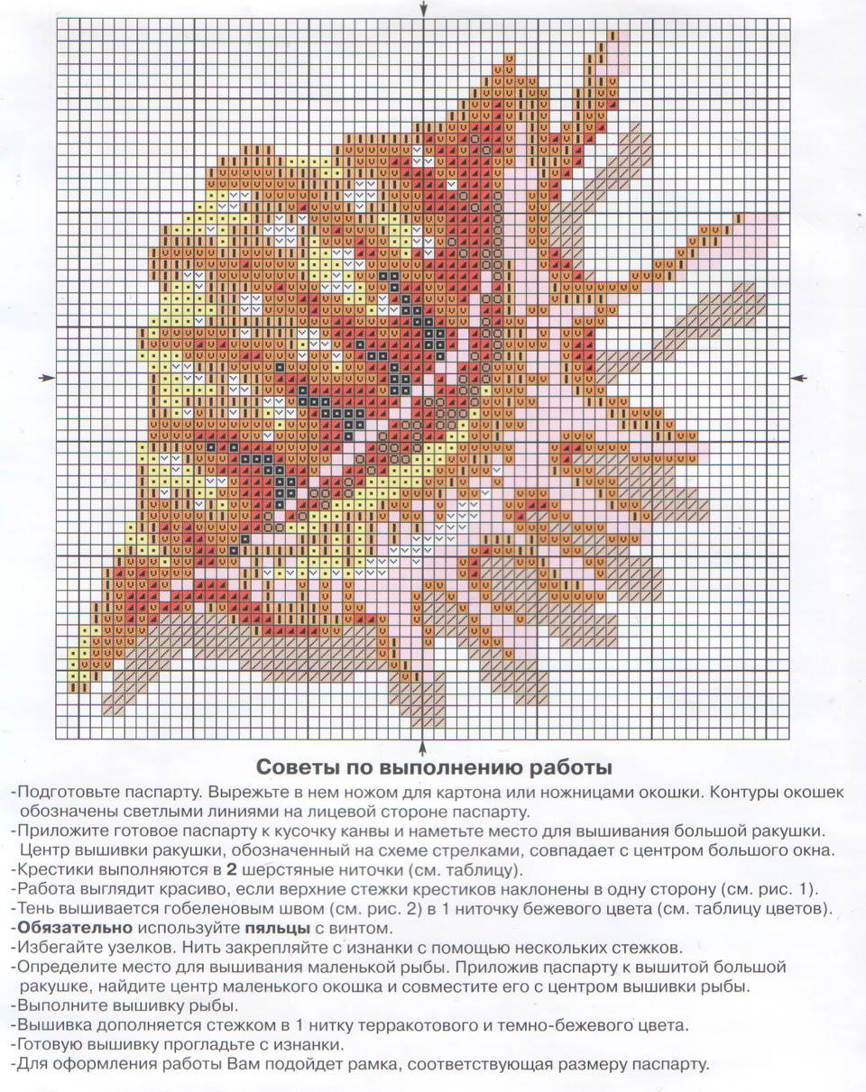 Ракушка - Схема для вышивания крестиком