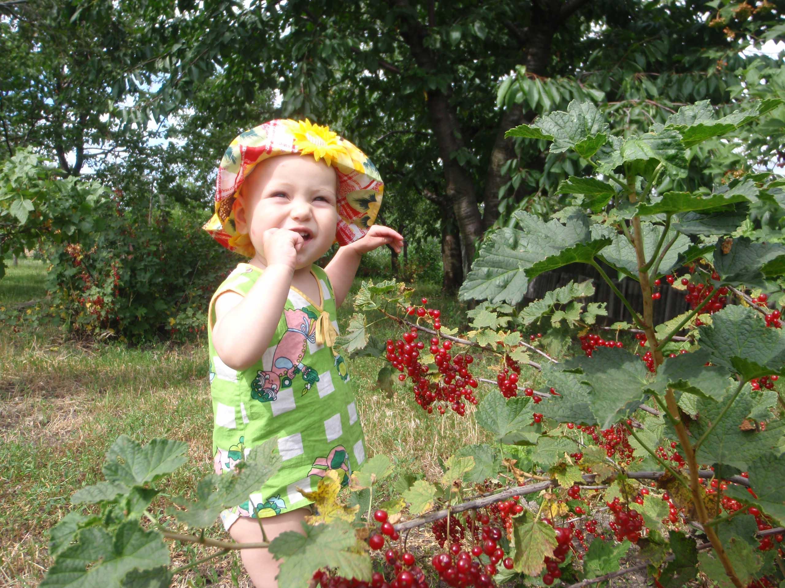 Рассказ лето у бабушки в деревне 19 фотография