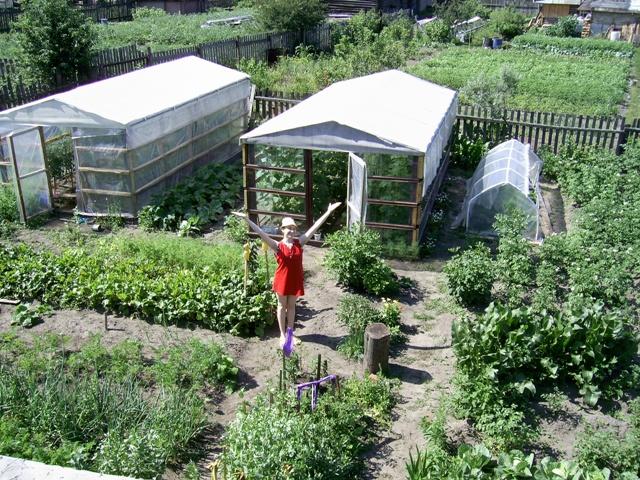 Сад и огород щелково