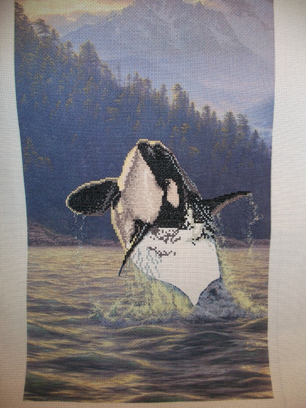 После перерыва. Magnificent Orca - Касатка