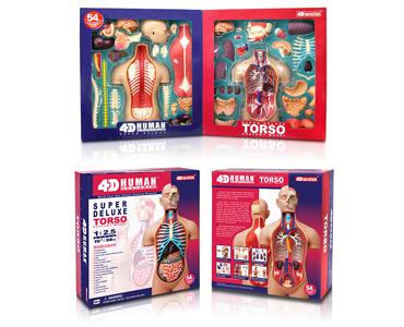 лечится анатомия для детей макет помогите