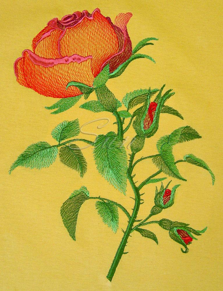 Розы вышивка машинная 73