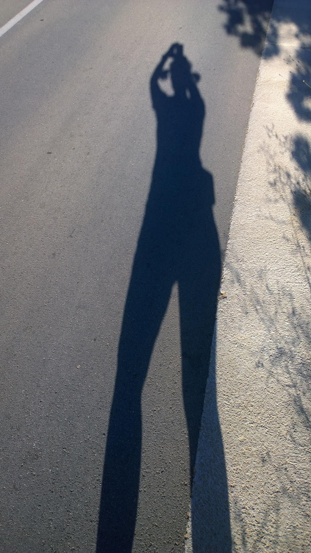 Секс во время утренней пробежки 2 фотография