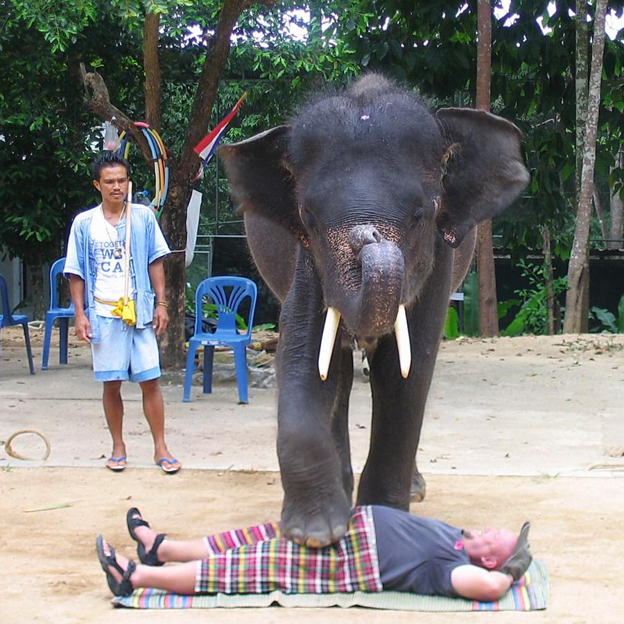А тайский отпуск так хорошо начинался…. Привет из отпуска!
