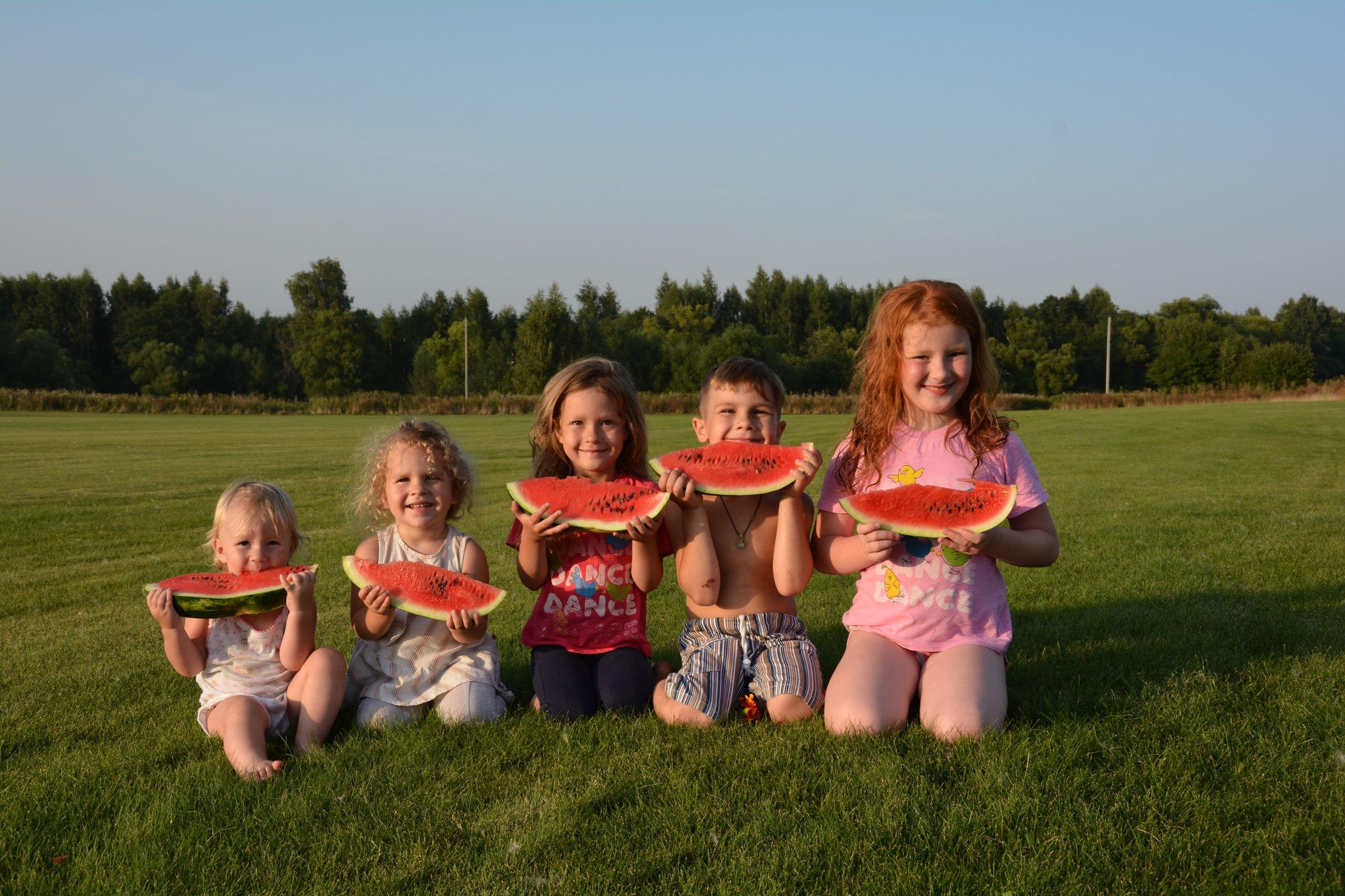 Как делили мы арбуз............ Совершенно летние!