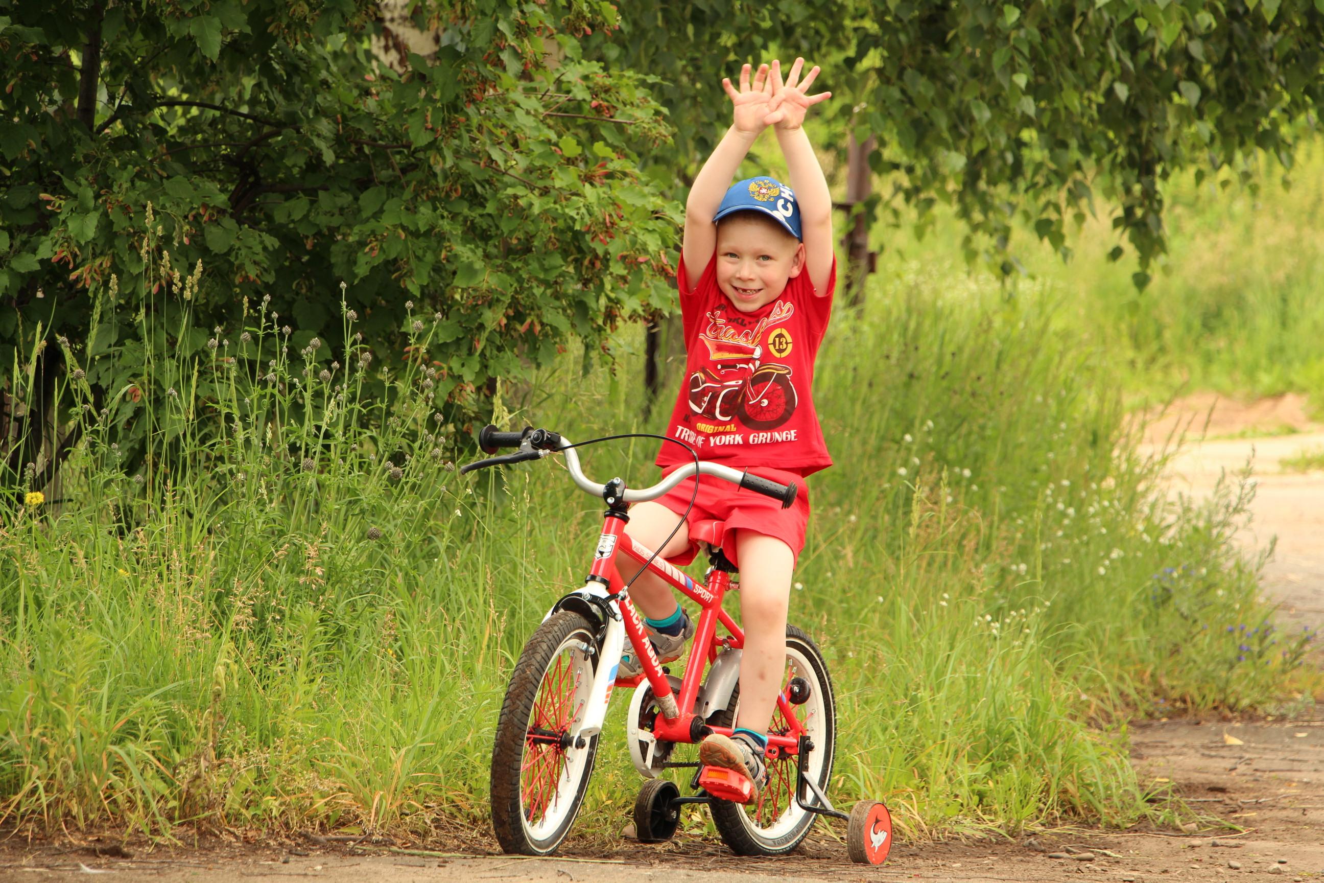 Мне подарили велосипед. Совершенно летние!