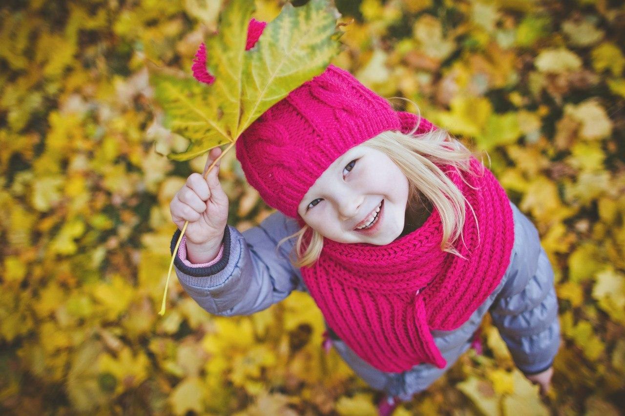 Осень - не повод для грусти!. Краски осени