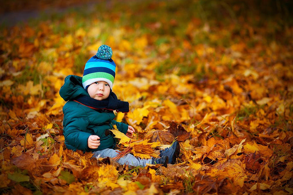 Осень золотая. Краски осени