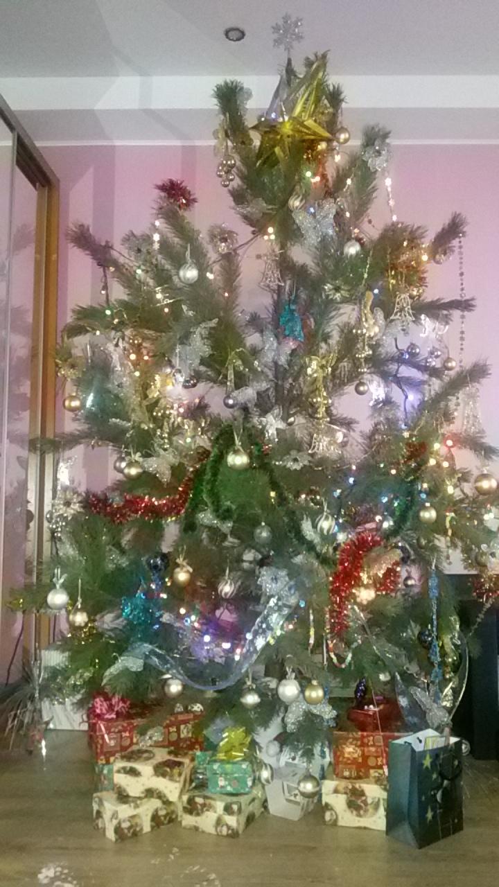 у нашей ёлки дед мороз наследил!. Блиц: новогодняя елка