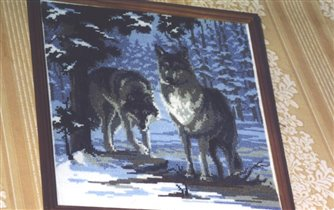 Волки - Риолис