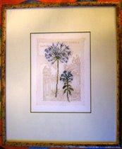цветок от лука или одуванчик Ланарте
