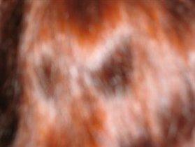 снимок со спины