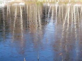 Лед, октябрь 2005 года