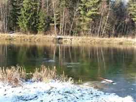 Лед №2, октябрь 2005 года