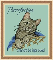 JCD-#178-Cattitudes-The Sixth Litter-Purrfection