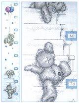 29-Teddy - ростометр