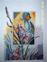 Бабочки и ирисы (Пермин)