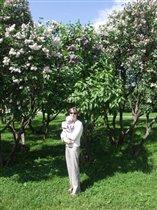 Один раз в год сады цветут