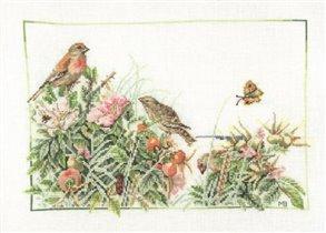 Птицы в шиповнике
