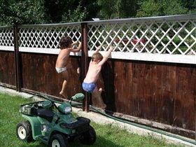 Дерзкие похитители клубники скрылись на зелёном джипе