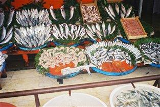 Дары моря на Стамбульском рыбном рынке