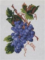 Виноград без оформления