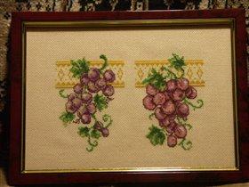 Виноград для свекрови