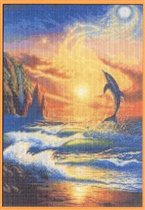 Dolphins dream