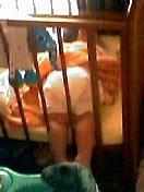 Алан спит