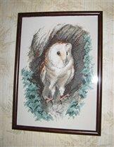 Barn Owl  от Heritage