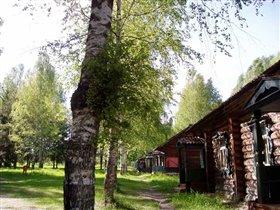 Деревянные домики. В них мы жили два дня