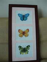 бабочки оформлены