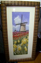 Heritage Tulip