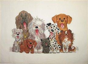 Собаки от Janlynn