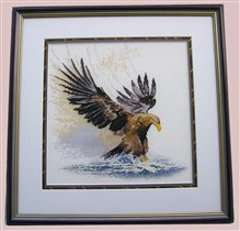 'Eagle in flight', Heritage