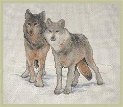 Wolf Duo - Janlynn