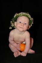 Цветочные феи любят апельсины!