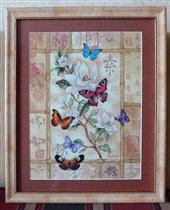 Торжество великолепных бабочек