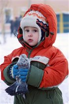 Люблю голубей кормить и ловить..