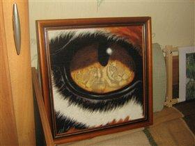 Глаз тигра в оформлении.