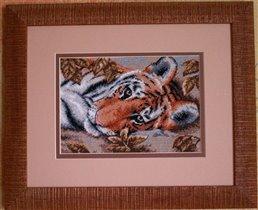Dimensions Beguiling Tiger