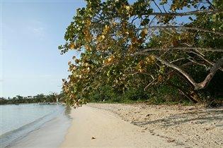 Пляж в Negril