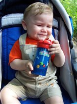Лето жаркое, целый день компот пью...
