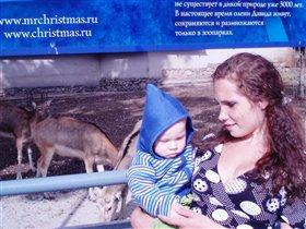 С Оленями в Московском Зоопарке