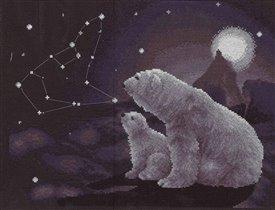 Панна Полярная ночь