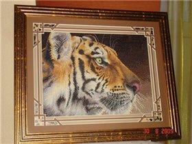 Королевский тигр
