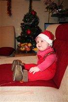 Наш Дед Мороз елку из лесу принес!
